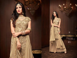 Heavy Football Net With Embroideri Siquence And Moti Work Skin Colour Dress