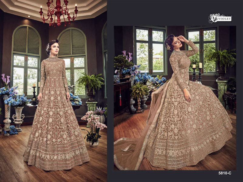 Net with Embroidery Codding With Sequence Work And Stone Work Light Broun Colour Gown