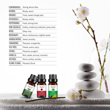 Load image into Gallery viewer, Unclin Therapeutic 100% Pure Natural Essential Oil - Patchouli