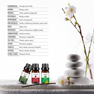 Unclin Therapeutic 100% Pure Natural Essential Oil - Patchouli