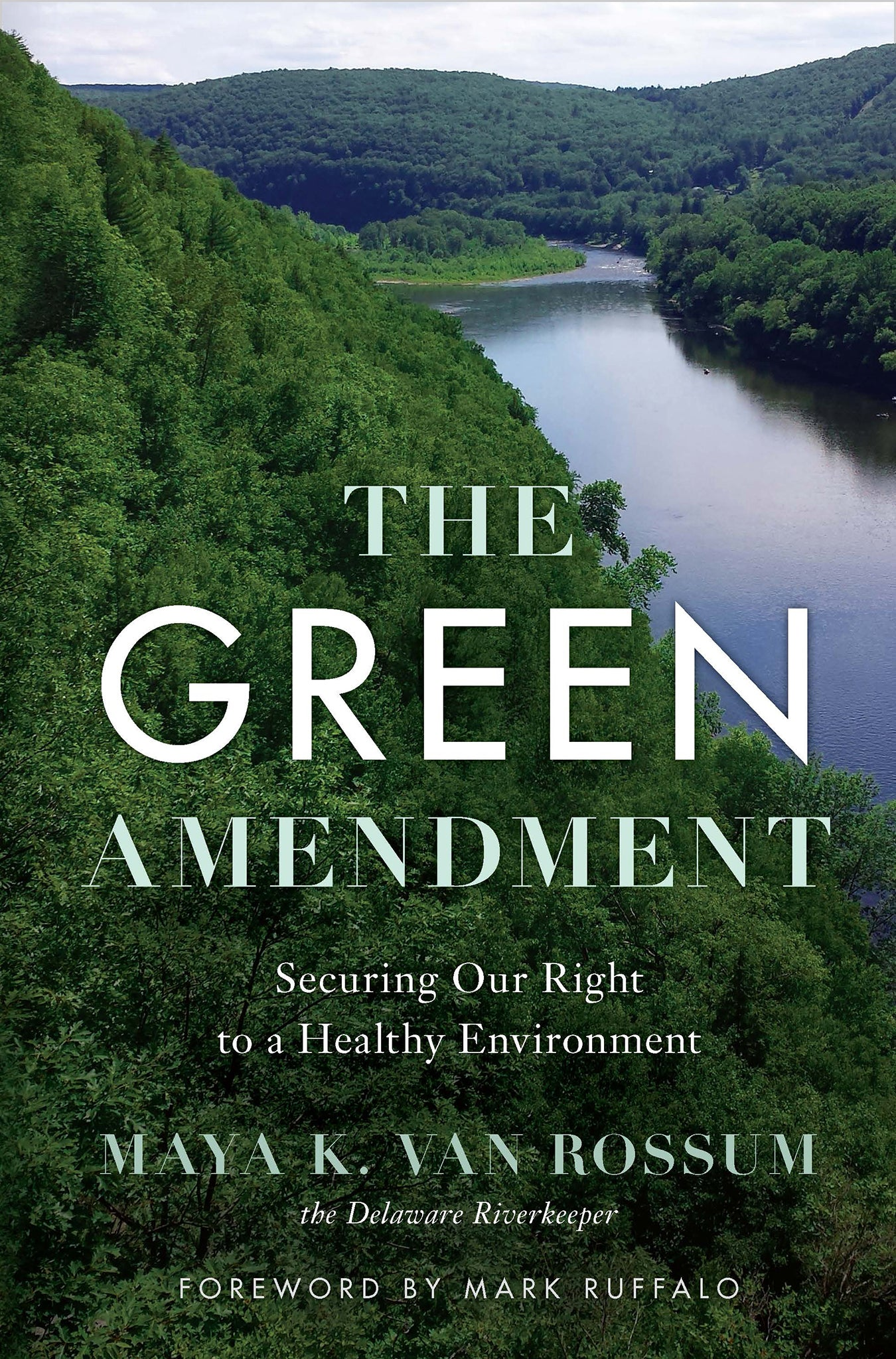 The Green Amendment book cover
