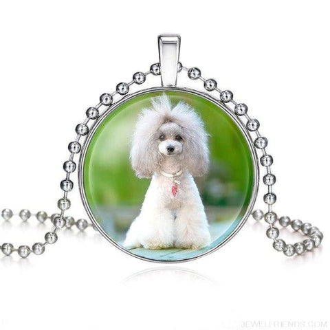 Image of Dogs Pictures Glass Cabochon Pendant Necklace - 62040003 - Custom Made | Free Shipping