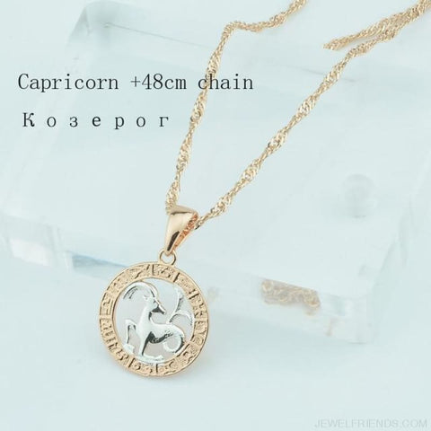 Image of Zodiac Sign Rose White Circle Twisted Chain Necklaces - Capricorn Chain - Custom Made | Free Shipping