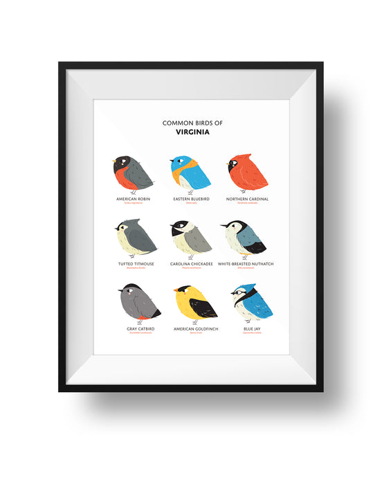 Nine Common Birds in the State of Virginia in a frame