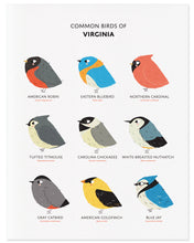 Load image into Gallery viewer, Nine Common Birds in the State of Virginia
