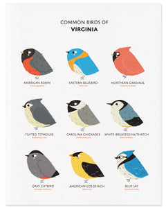 Nine Common Birds in the State of Virginia