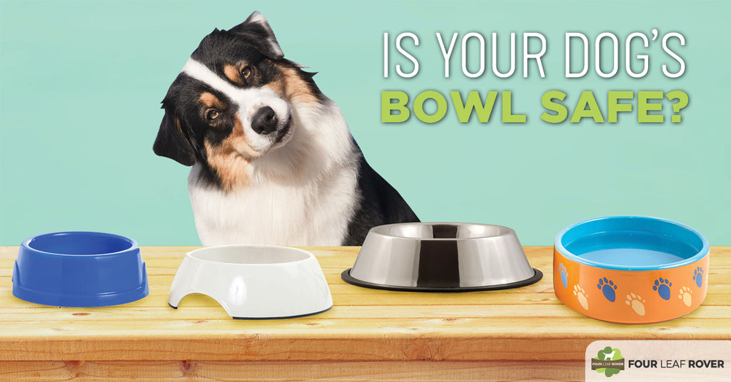 How Safe Is Your Dog's Bowl?