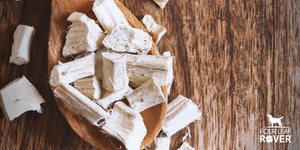 11 Ways Marshmallow Root Can Help Your Dog