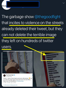 The Good Fight (CBS) - Plants Clear, Violent Message in Tweet, Deletes, Dismisses