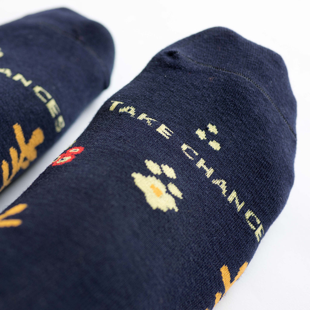 Talking Toes Dream Big Socks in Take Chances