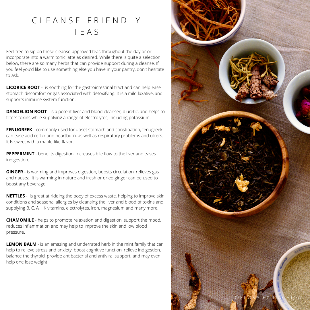 CLEANSING WITH THE SEASONS – SPRING INTEGRATIVE E-COURSE