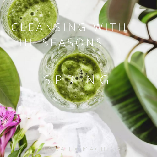CLEANSING WITH THE SEASONS – SPRING