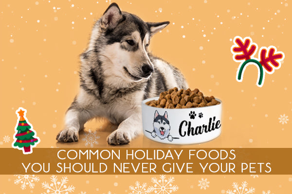 Common Holiday Foods You Should Never Give Your Pets