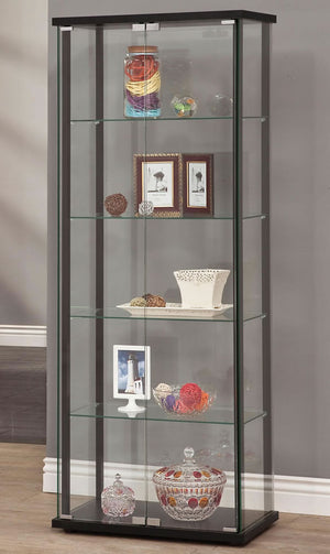 Tall Glass Curio with Black Frame