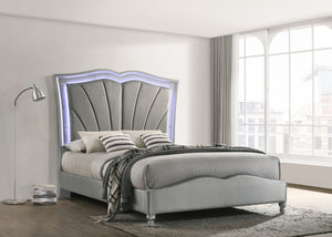 Chia Grey Velvet Bed with LED Lighting