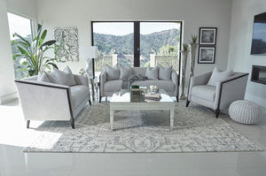 Whitney Dove Grey Living Room Collection