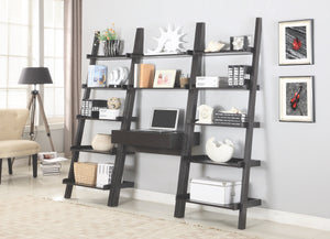 Elle Ladder Writing Desk in Cappuccino