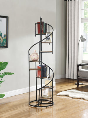 Spiral Staircase Bookcase