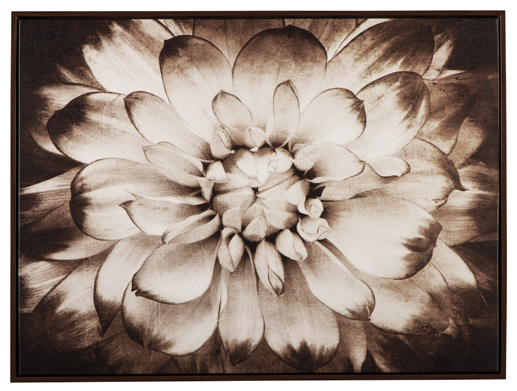 Blooming Flower in Sepia Canvas Wall Art
