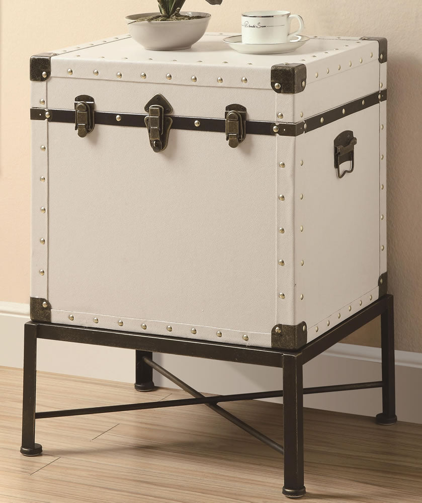 Trunk Style Side Table with Storage