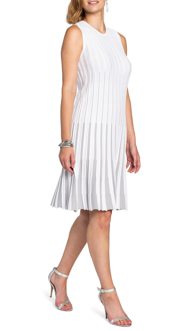 Charlotte Fit and Flare Dress in White/Silver