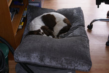Springer Spaniel Dog Bed