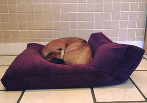 Rhodesian Ridgeback dog bed