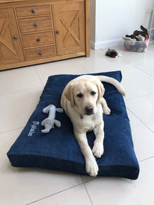 Golden Lab dog bed