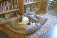 Collie dog bed