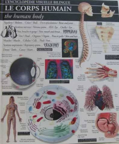 Livre ISBN 207057511X Le corps humain - the human body: l'encyclopédie visuelle bilingue
