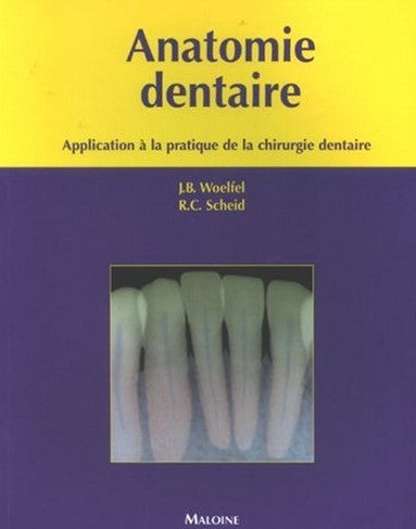 Livre ISBN 2224029268 Anatomie dentaire : Application à la pratique de la chirurgie dentaire