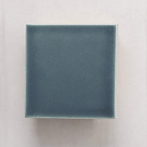 Sample Basis Collection Color Chip | Lake Blue