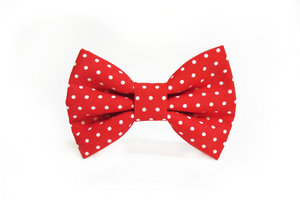 Dog Bow Tie - Polka dot