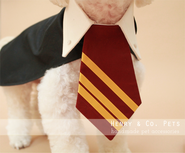 Harry Pawter Dog Costume