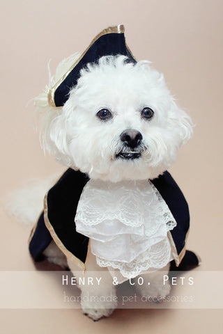 Captain Dog Costume