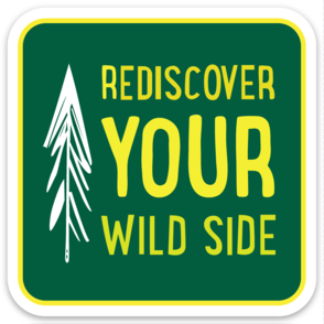 Rediscover Your Wild Side Sticker - Vintage Green