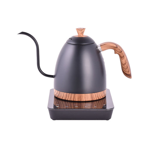 Brewista Artisan Gooseneck Variable Kettle