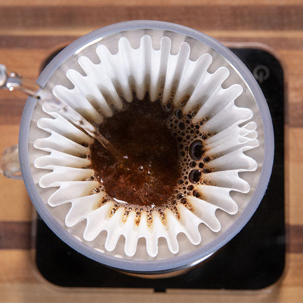 Espro Bloom Pour Over Dripper