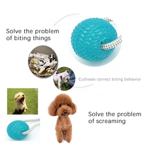 【Anniversary sale -50% OFF】Multifunction Pet Molar Bite Toy
