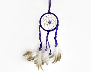 Dream Catcher Purple With Brown Feathers 6cm