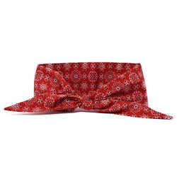 Modern Beast - Necktie in Classic Red