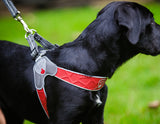 Cortina Red Harness by Huggle Hounds