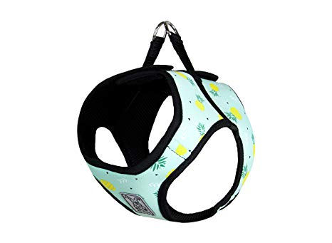 RC Pet Step in Harness, Pineapple Parade
