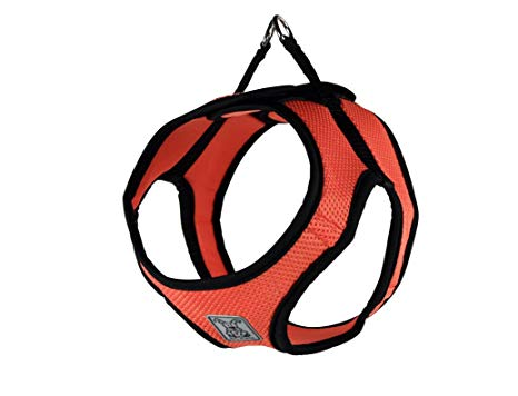 RC Pet Step In Cirque Harness, Coral