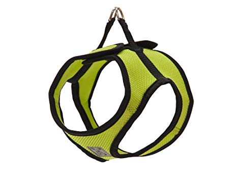 RC Pet Step In Cirque Harness, Lime
