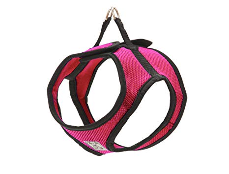 RC Pet Step In Cirque Harness, Raspberry