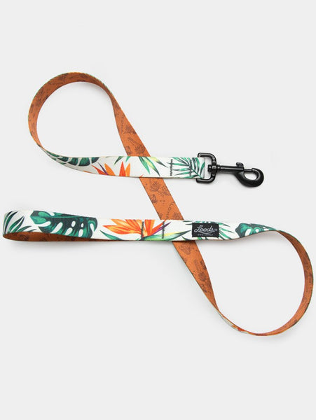 The Tropicana leash