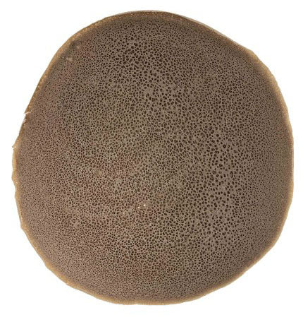 Image of Agelgle Regular Injera - AVM