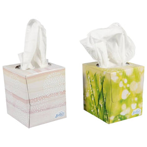 Facial Tissues with Aloe- 6 packs