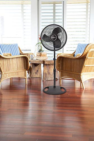 Oscillating Stand Fan - AVM